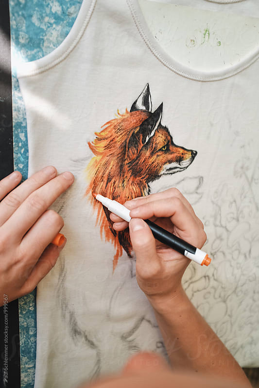 fox by Paul Schlemmer for Stocksy United