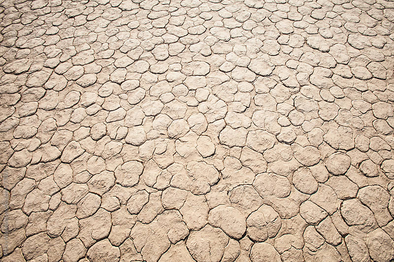 Dry cracked mud texture at Sossusvlei, Namibia by Micky Wiswedel for Stocksy United