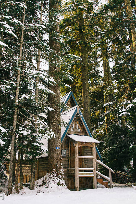 Cozy log cabin tucked in woods covered with snow by Jesse Morrow for Stocksy United