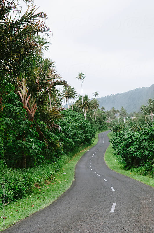 Road South Coast Samoa. by Thomas Pickard for Stocksy United