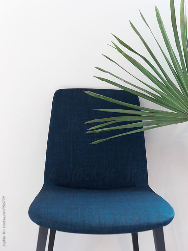 Blue Chair with Palm Leaf by Sophia Hsin for Stocksy United