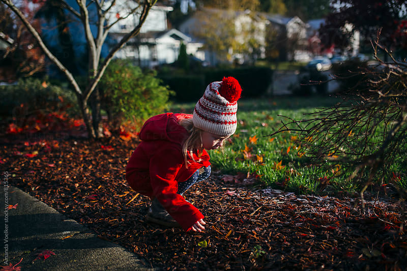 A Little Girl Looks at the Frost in the Bright Morning Sunlight by Amanda Voelker for Stocksy United