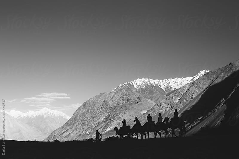 Nubra Valley camel riding by Daria Berkowska for Stocksy United