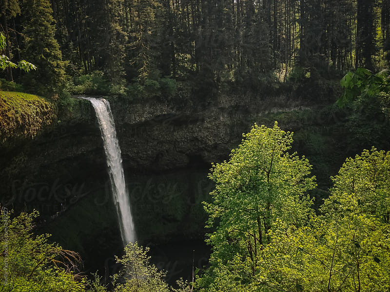 Silver Creek Falls by Shelly Perry for Stocksy United