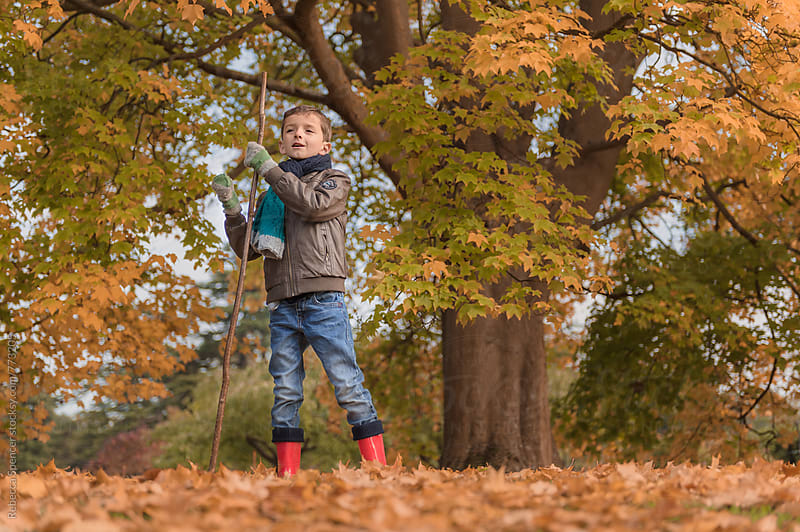 Young explorer with walking stick surrounded by autumn foliage by Rebecca Spencer for Stocksy United