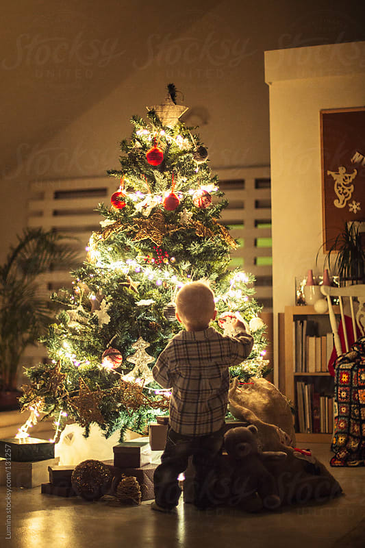 Boy by the Christmas Tree by Lumina for Stocksy United