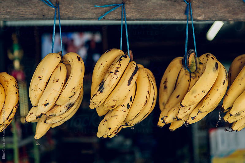 Bananas hanging in a market by Jordi Rulló for Stocksy United