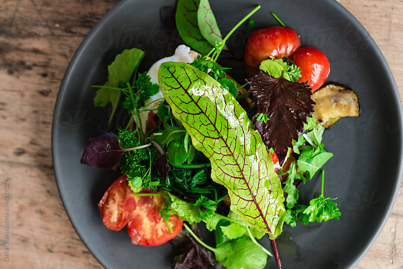 green side salad with olive oil dressing and sorrel leaf by Gillian Vann for Stocksy United