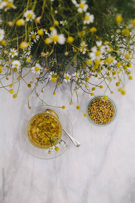 Freshly made organic chamomile tea by kkgas for Stocksy United