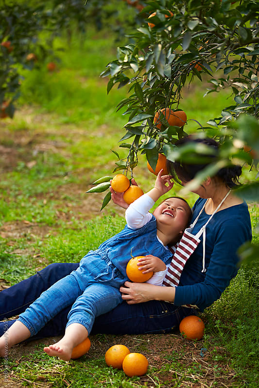 little asian girl having fun in the orange farm with her mother by Bo Bo for Stocksy United