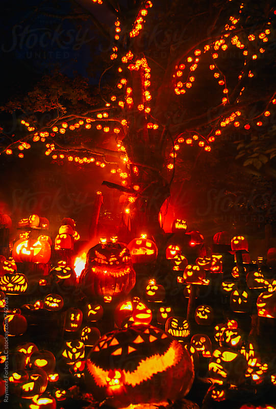 Jack O Lanterns by Raymond Forbes LLC for Stocksy United