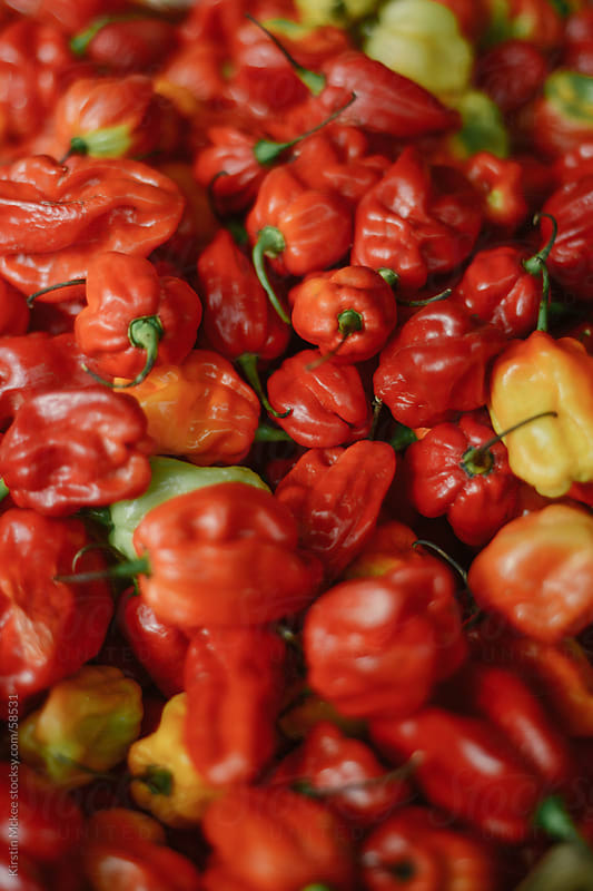 Scotch bonnet chili peppers at a market stall by Kirstin Mckee for Stocksy United