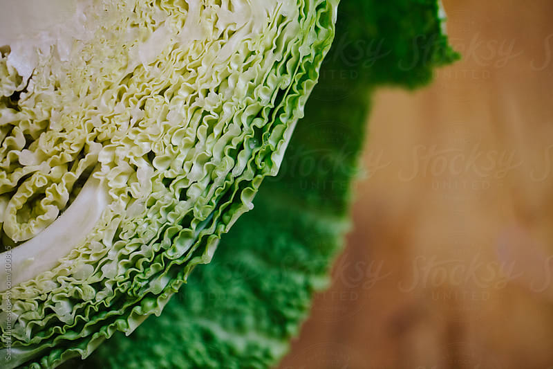 detail of a savoy cabbage cut in half on a cutting board by Sarah Lalone for Stocksy United