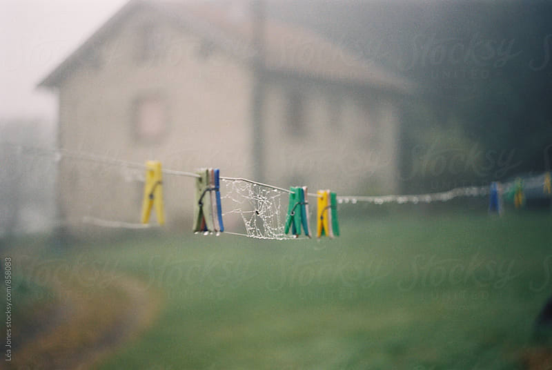 wet laundry line in front of farmhouse by Léa Jones for Stocksy United