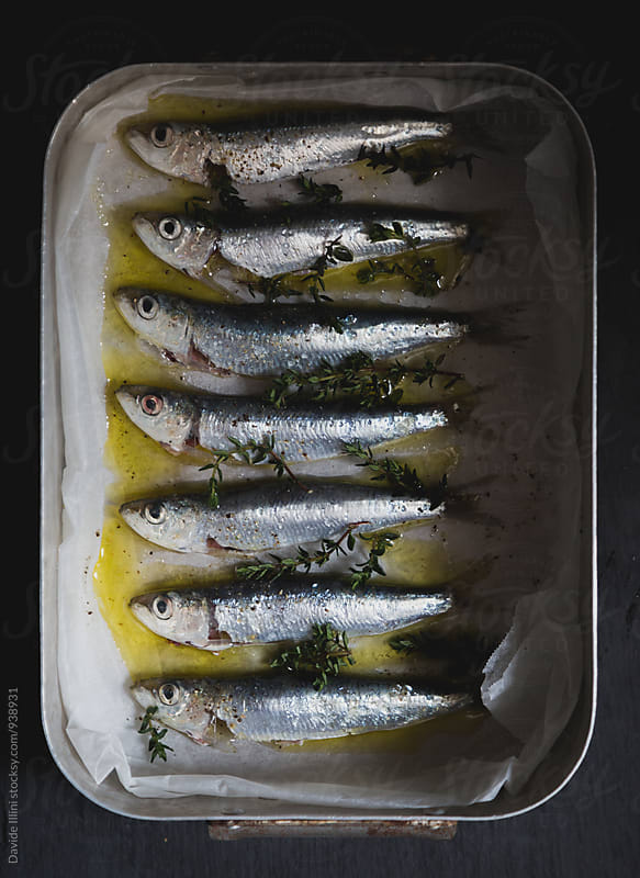 Fresh sardines ready to be cooked by Davide Illini for Stocksy United