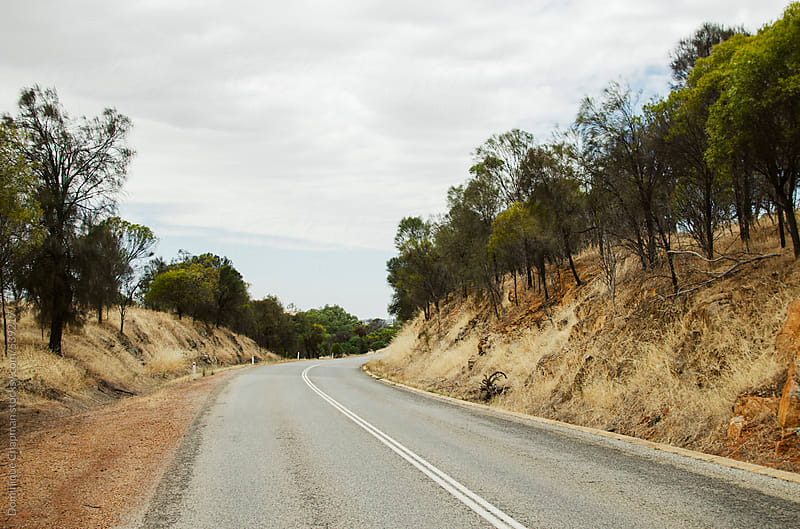 Road through wheatbelt by Dominique Chapman for Stocksy United