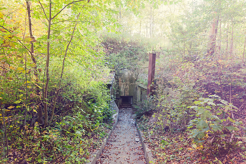 Ruin of a hidden German bunker from World war II in a Danish forest by Elisabeth Coelfen for Stocksy United