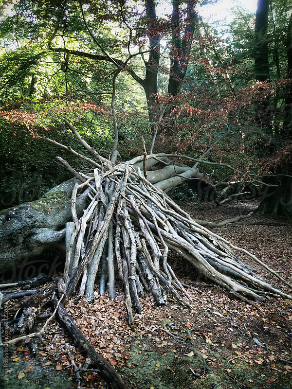 A shelter made of branches in the woods by James Ross for Stocksy United