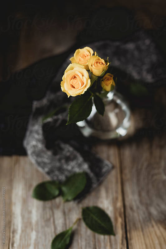Roses by Tatjana Zlatkovic for Stocksy United