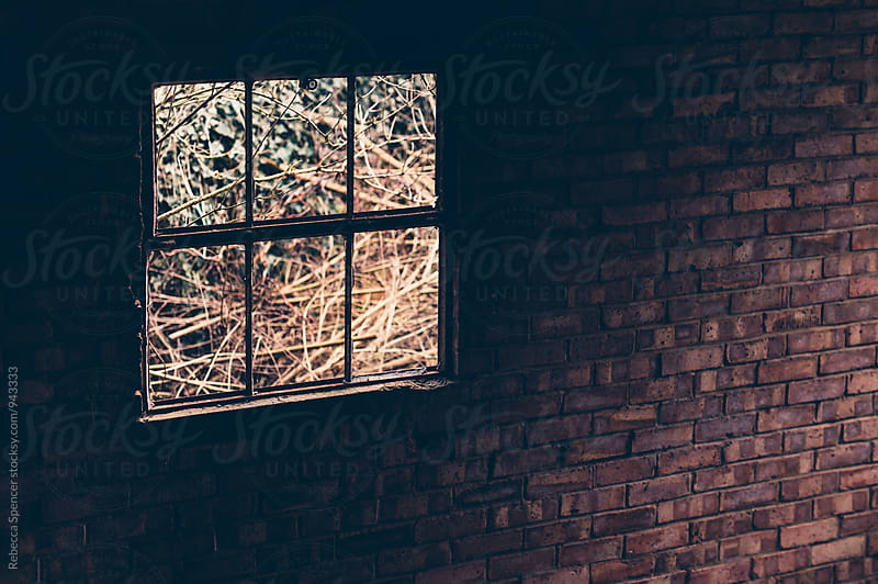 Broken window in a brick wall looking out onto overgrown land by Rebecca Spencer for Stocksy United