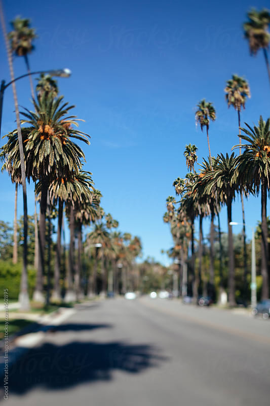 Beverly Hills by Good Vibrations Images for Stocksy United