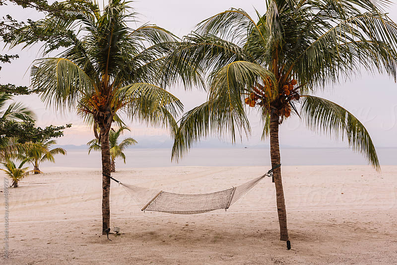 Hammock between two coconut trees by Adrian Seah for Stocksy United