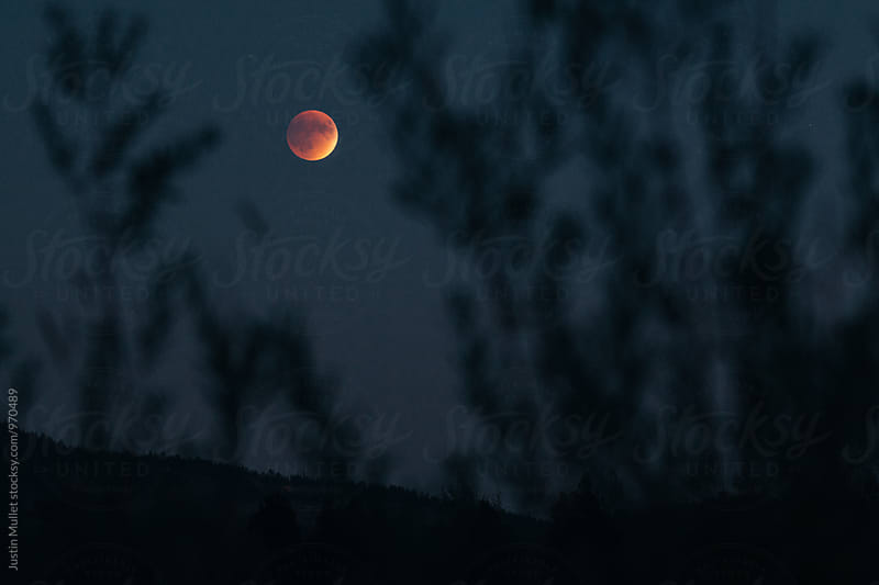 Blood moon rising above mountain side by Justin Mullet for Stocksy United