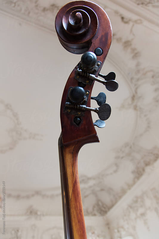 Cello Scroll and Tuning Pegs by Tommaso Tuzj for Stocksy United