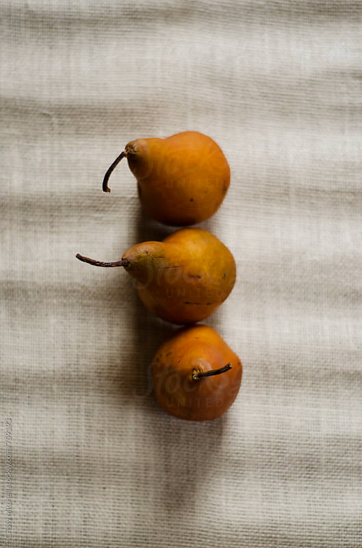 pears by Crissy Mitchell for Stocksy United