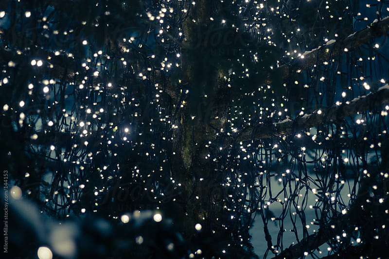 Lights by Milena Milani for Stocksy United