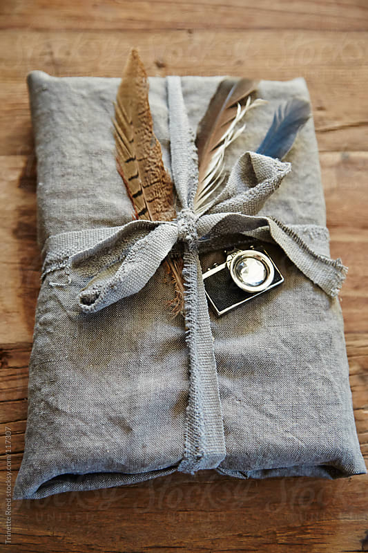 Hipster gift wrapped in linen with feathers and vintage camera by Trinette Reed for Stocksy United