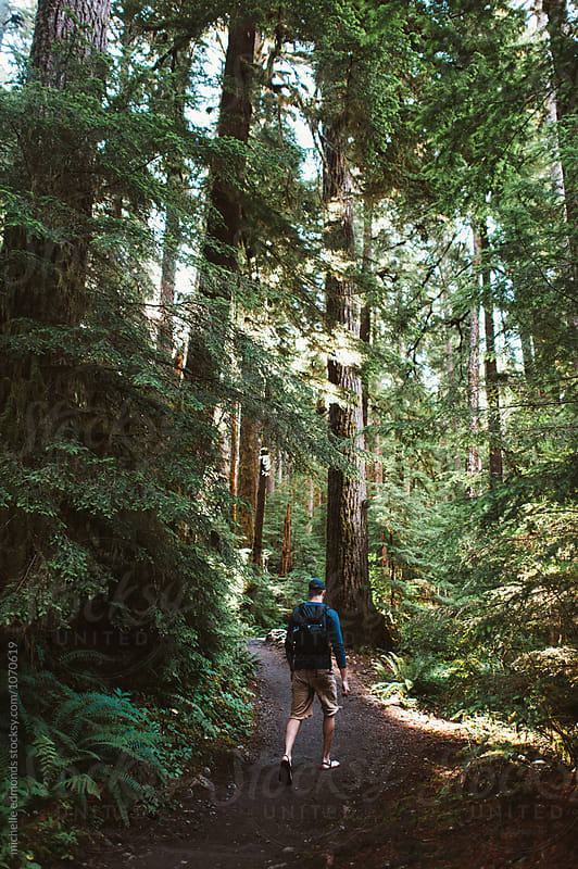 Man Hiking on Trail in Olympic National Park in Washington by michelle edmonds for Stocksy United