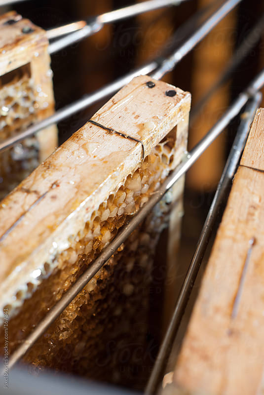 Loaded honey extractor by Pixel Stories for Stocksy United