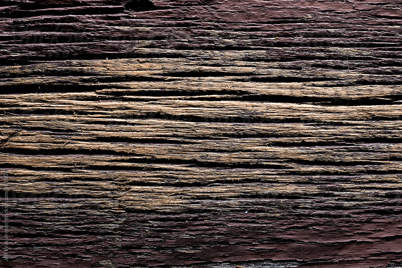 Rustic Wood Texture Background by Studio Six for Stocksy United