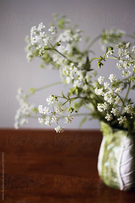 Cow Parsley in a jug on a table by Helen Rushbrook for Stocksy United
