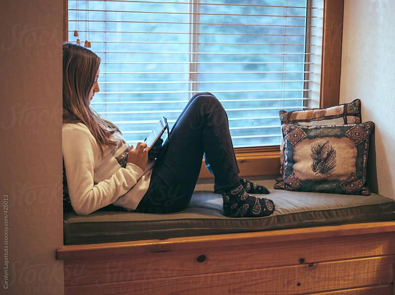 Sit In Window sitting window - home design