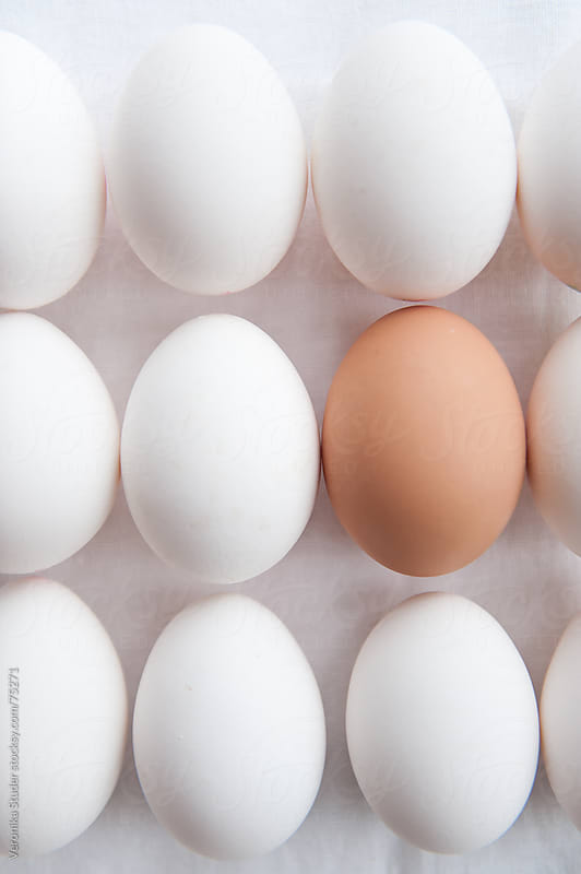 Eggs in row by Veronika Studer for Stocksy United