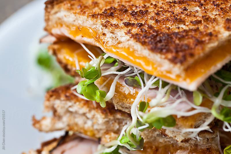 Grilled Cheese Sandwich by Jill Chen for Stocksy United