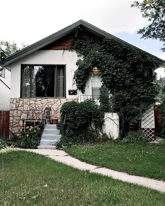 Cute house covered in vine by Carey Shaw for Stocksy United