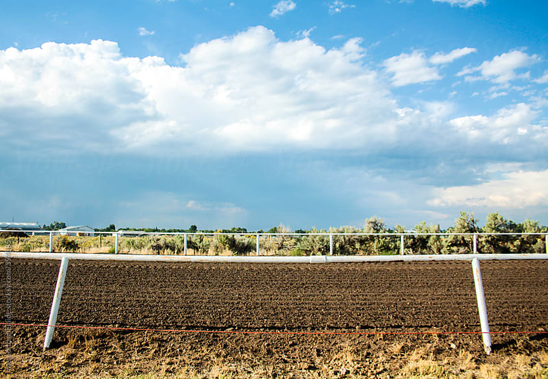 Rodeo Horse Racetrack on a Clear Sunny Day by meredith adelaide for Stocksy United