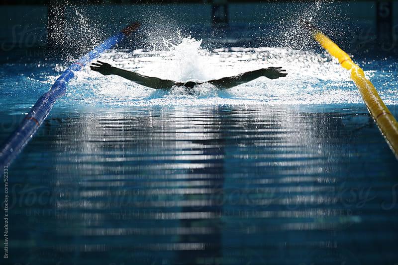 Swimming butterlfy by Bratislav Nadezdic for Stocksy United