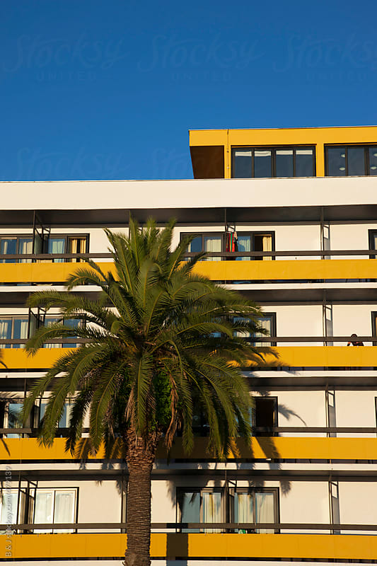Palm tree in front of sunny hotel by B & J for Stocksy United