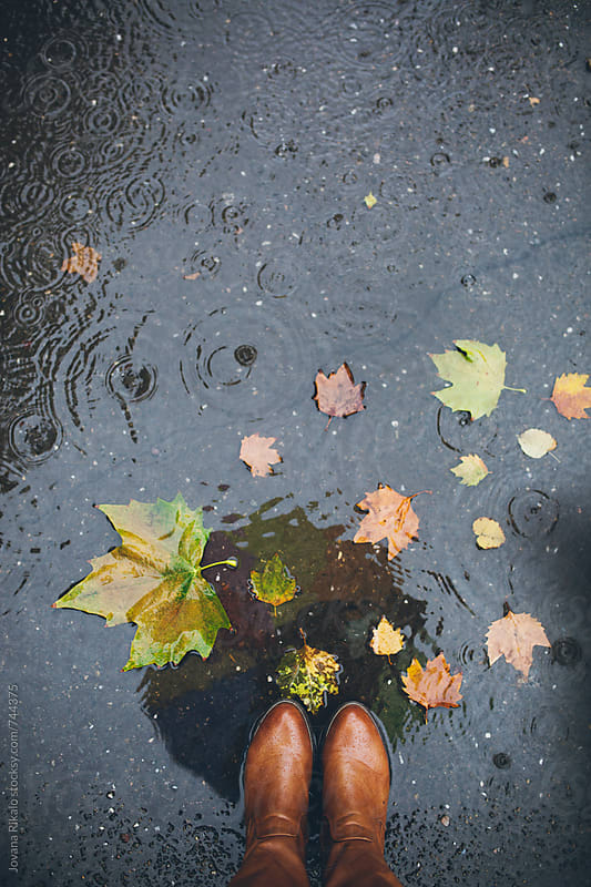 Puddle reflection of a young woman holding umbrella by Jovana Rikalo for Stocksy United