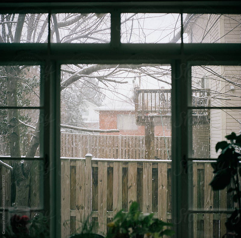 Fresh snow through the window by Cameron Whitman for Stocksy United