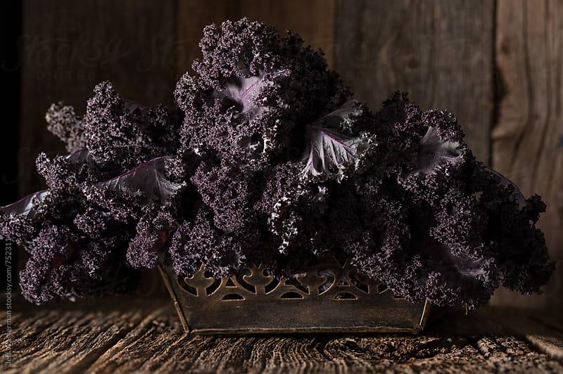 Purple Kale in Rustic Setting by Jeff Wasserman for Stocksy United