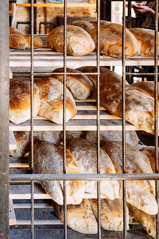 rack of freshly baked bread in a bakery by Gillian Vann for Stocksy United
