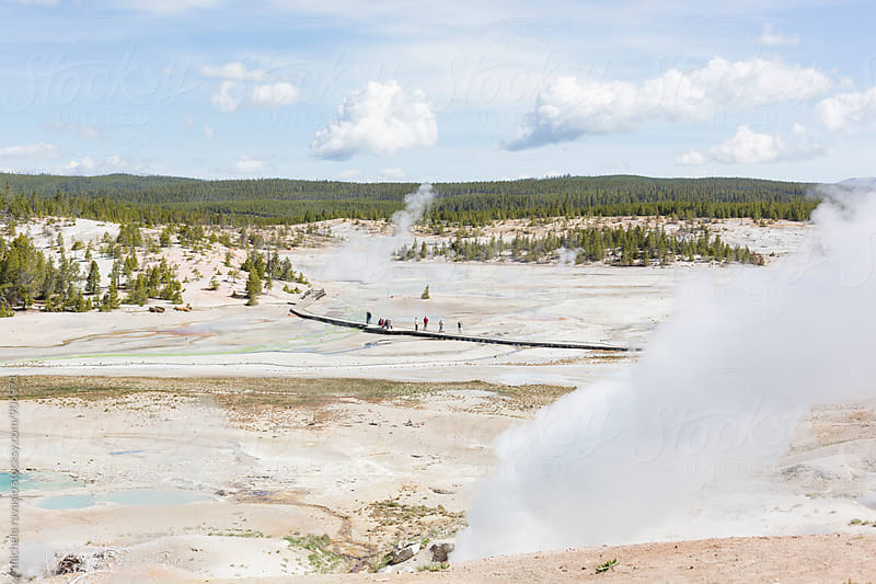 Norris Geyser Basin in the Yellowstone National Park by michela ravasio for Stocksy United