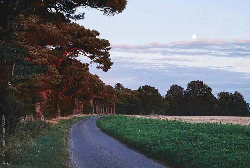 Moon over a remote country road. Norfolk, UK. by Liam Grant for Stocksy United
