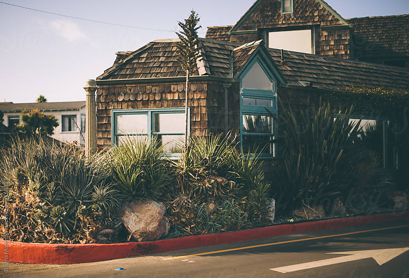 A House on a Corner with Succulents and Garden by Briana Morrison for Stocksy United