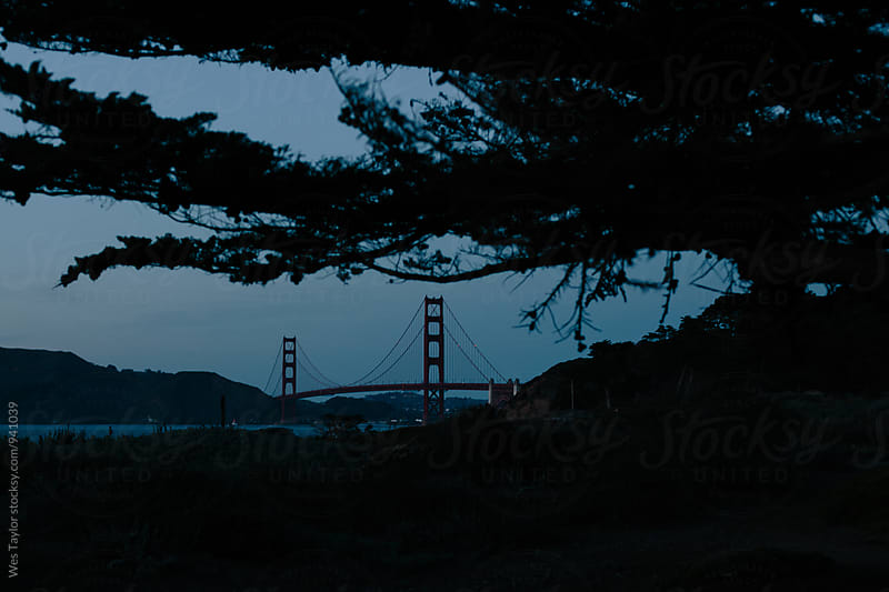 Golden Gate Bridge At Night by Wes Taylor for Stocksy United